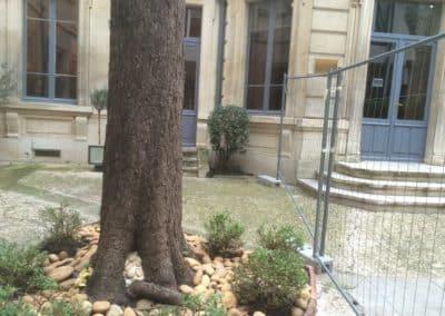 Paysagiste gazon en plaque BGP à Saint-Rémy de Provence